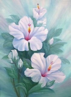 hibiscus acrylic painting - Google Search
