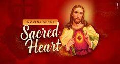 Novena to Sacred Heart of Jesus Heart Of Jesus, My Jesus, The Afflicted, Novena Prayers, Hail Mary, Pray For Us, Sacred Heart, Faith, Loyalty