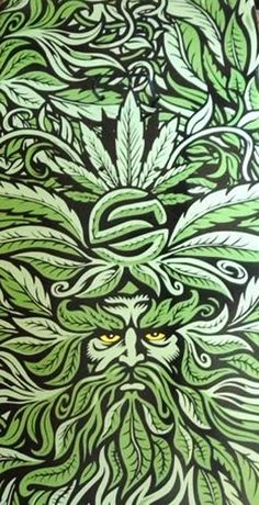 jim phillips weed god
