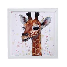 Jeco Canvas With Frame