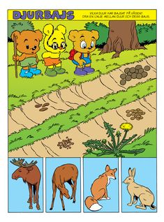 Djur i skogen – Bamse.se Teaching Biology, Teaching Tips, Abc Poster, Science Lessons, Kids Education, Halloween Diy, Geography, Homeschool, Parenting