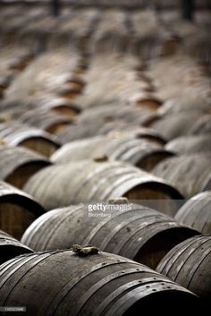 Photo d'actualité : Barrels of Remy Martin Fine Champagne Cognac are...