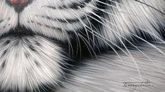 Tigre blanc peinture peinture à l'huile sur toile 40  X