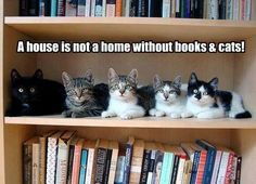 Be sure to shelve them together for convenience.