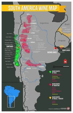 South America Wine Map: Carmenere, Malbec, et cetera Wine Facts, South America Map, Wine Folly, Chateauneuf Du Pape, Wine Education, Wine Guide, In Vino Veritas, Wine And Beer, Wine And Spirits