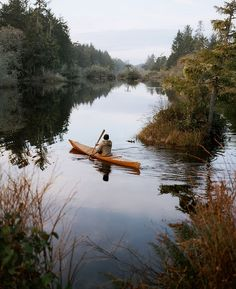There are many great camping locations in Oregon. From coastal camping to camping in central Oregon, there are beautiful campgrounds and state parks scattered across the state. Glorious Kayak Camping in Oregon Ideas. Camping En Kayak, Canoe And Kayak, Kayak Fishing, Outdoor Camping, Kayak Boats, Canoe Trip, Fishing Boats, Kayaking Tips, To Infinity And Beyond