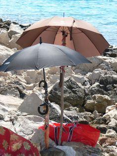 Top dog friendly beaches in Croatia Small Pine Trees, Shade Tent, Dog Shower, Dog Friends, Croatia, Beaches, Patio, Outdoor Decor, Dogs