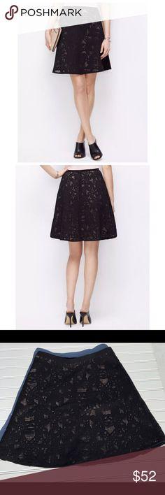 🎉NWT Ann Taylor 🎉⚫️BLACK FRIDAY SALE NWT black lace flounce skirt. SZ 10 petite. Ann Taylor Ann Taylor Skirts Mini