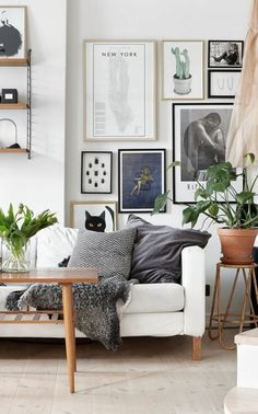 Neutral living room with white sofa and plants #neutral #midcentury #theeverygirl #greenliving