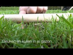 Kuilen en gaten in het gazon: Stap 7 - hoe kom je van die kuil in je gras af? - YouTube