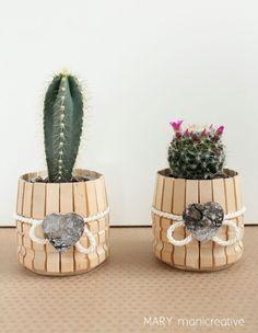 Piccoli vasetti per piante grasse riciclando le mollette