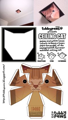 ceiling cat, papercraft