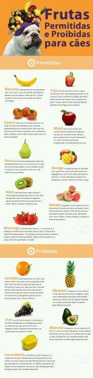 Frutas permitidas para cães