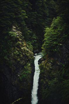 Nature Beaty