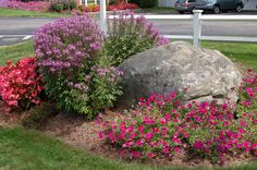 Begonias, cleome, and million bells grace this flower bed. But it's the boulder that makes it different from just any bed. Need more ideas for using stone in the landscape? Check out these ideas: http://landscaping.about.com/cs/hardscapefences1/a/stone_work.htm