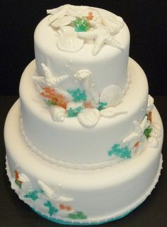 "Sea shell cake with isomalt ""coral"" Chocolate Shells, Isomalt, Sea Shells, Wedding Cakes, Coral, Desserts, Amor, Shells, Enamel"