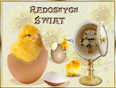 Bird, Easter Activities, Birds