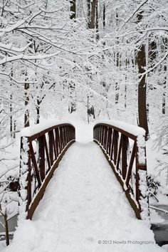 Snow covered bridge in Montgomery County, Maryland
