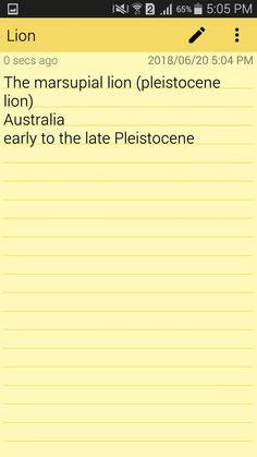 Pleistocene lion