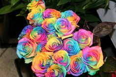 unusual flowers | Rainbow Roses to Make Your Wedding Unique | Flowers Blog | Flowers ...