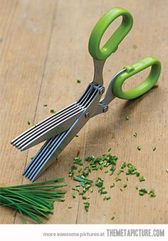 scissors useful for cutting up herbs :D