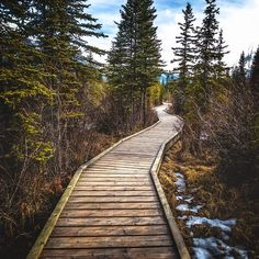 « Take a walk through this wonderland of Alberta. This walkway opens up to show you the view of my previous upload such a stunning place here in Canmore,… »