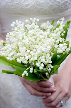 "lily of the valley- The ""Belles"" bouquets (Bridesmaids)"