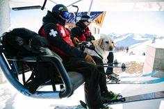Colorado Avalanche dogs on the ski slopes in Colorado