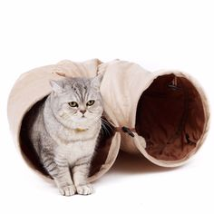 Cat Tunnel with Ball – Accessories & Products for Cats