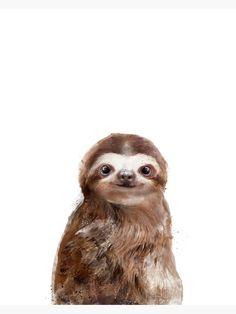 """Little Sloth"" Metal Print by AmyHamilton   Redbubble Canvas Art, Canvas Prints, Animal Drawings, Framed Art Prints, Wall Prints, Fine Art America, Cute Animals, Thing 1, Artsy"