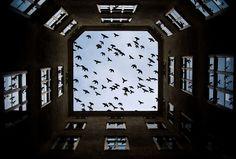 reflections by Yevhen Marchenko, via 500px