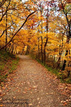 Fallll! Matthiessen State Park - Illinois