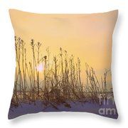 Country Sunrise Throw Pillow by Inspired Arts