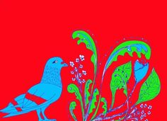I quite like pigeons, even though they are really mangy. Pigeon, Illustrations, Illustration, Illustrators