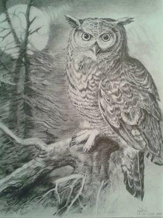 Ilustracion-Buho(pepe)(grafito)por nadia