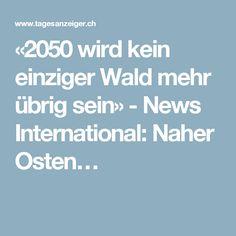 «2050 wird kein einziger Wald mehr übrig sein» - News International: Naher Osten…
