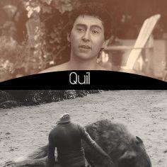 Quil - 'The Twilight Saga'