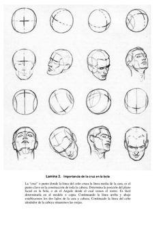 "17 Sería como dibujar un coche Lamina 2. Importancia de la cruz en la bola La ""cruz"" o punto donde la línea del ceño cruza... Andrew Loomis, Figure Drawing Reference, Human Figure Drawing, Drawing Practice, Drawing Lessons, Drawing Techniques, Human Anatomy Drawing, How To Draw Anatomy, Head Anatomy"