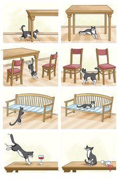 ¡Gato muy elegante! (para trabajar las preposiciones)