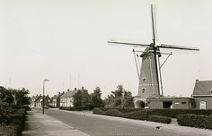 Zeelst, Kapelstraat. Rechts de korenmolen van Zeelst. Jos Pé (fotograaf) 1960 - 1970