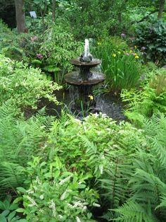 Fotos de Jardines y Plantas espectaculares : Jardín y Terrazas