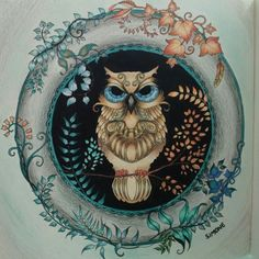 Coruja, floresta encantada e jardim secreto, Joahnna Basford, livro de colorir