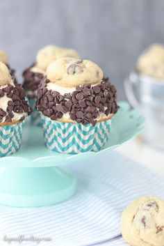 The Ultimate Cookie Dough Cupcakes. A vanilla malt cupcake with cookie dough frosting, rolled in chocolate chips and topped with a chocolate chip cookie!