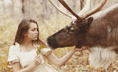 Katerina Plotnikova  /// It's probably not even technically a moose, but all I can see is Sam Winchester getting his chin scratched.