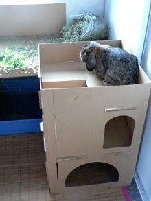 Aire de jeux pour lapin pinteres - Maison en carton pour chat ...