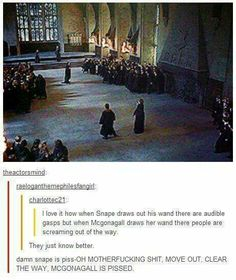 Harry Potter and the Deathly Hallows. Probably because Snape is always angry but when you make McGonagall mad. Harry Potter Love, Harry Potter Universal, Harry Potter Memes, Slytherin, The Nerd, No Muggles, Def Not, Yer A Wizard Harry, Fantastic Beasts And Where