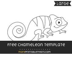 Chameleon Worksheets Kindergarten