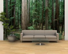 "Forest Wall Mural bedroom ""in the forest"" photo wallpaper / wall mural #mural"