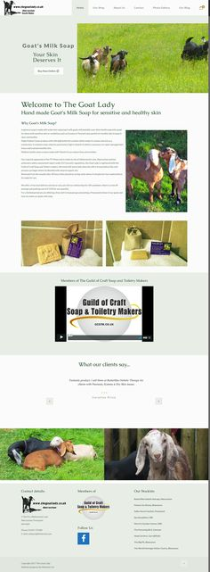 Ecommerce website for Goats milk soap Portfolio Web Design, Goat Milk Soap, Healthy Skin, Ecommerce, Goats, Website, Healthy Skin Tips, E Commerce