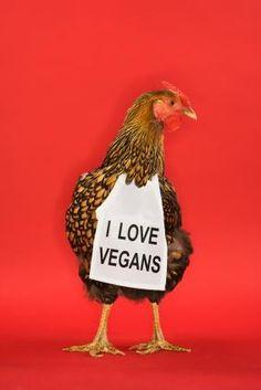 Why vegan????